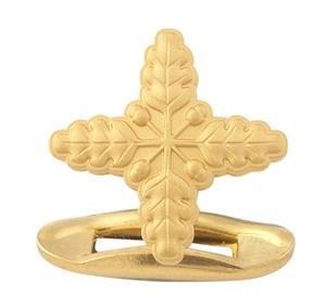 Aukso spalvos sąsagos