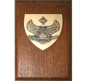 Žalvarinė plaketė su mediniu pagrindu